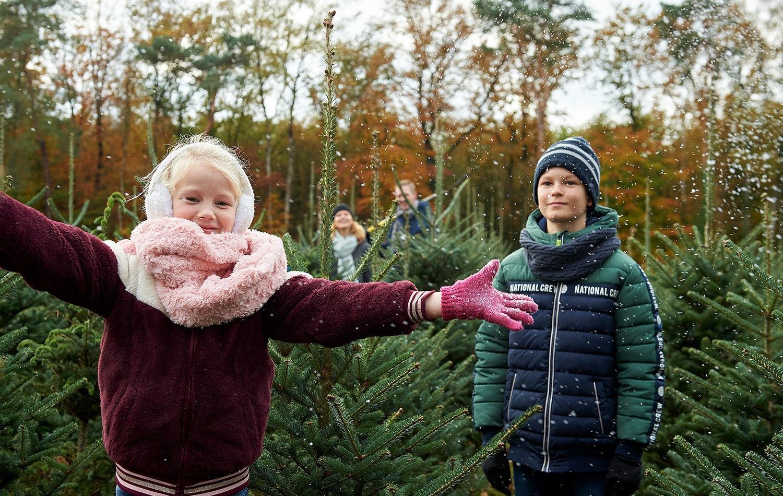 Franken-kerstbomen-kinderen-kerstboom